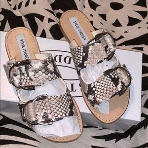 Steve Madden Snake Slide Sandals